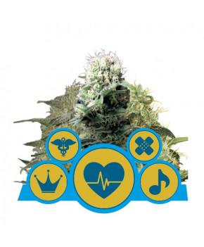 Medical CBD Mix